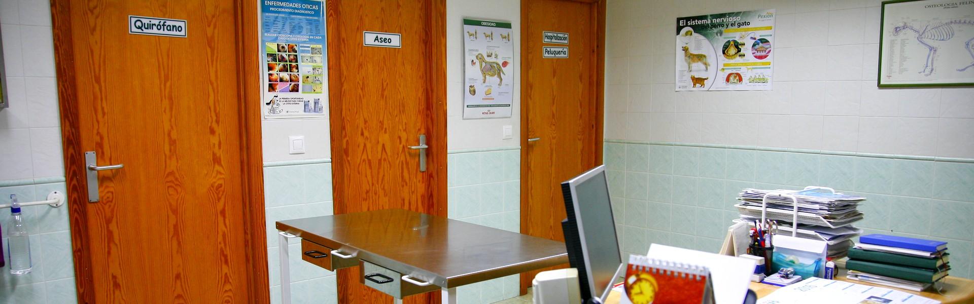 Banner-centro-veterinario-lares-nuevas-5